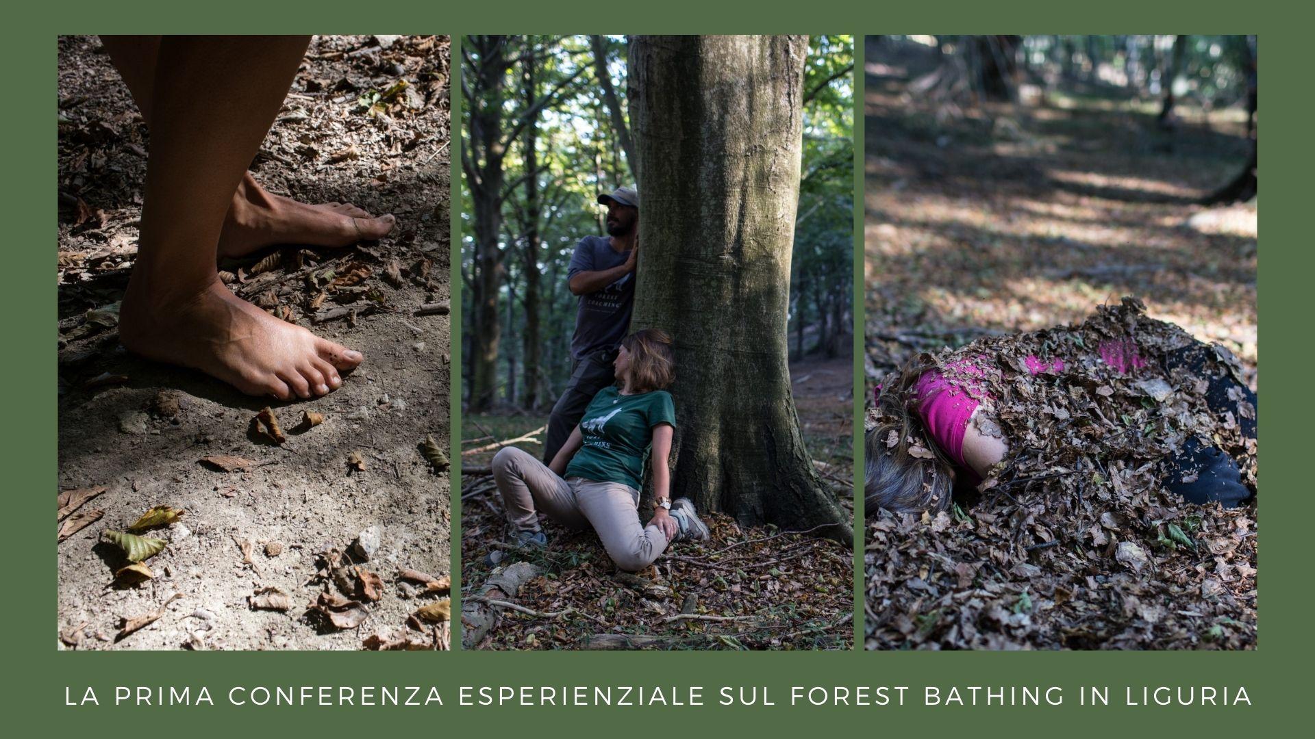 Forrest Bathing
